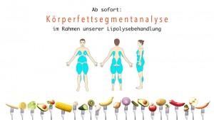 Körperfettsegmentanalyse