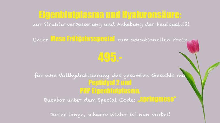 Frühlings-Special 2019